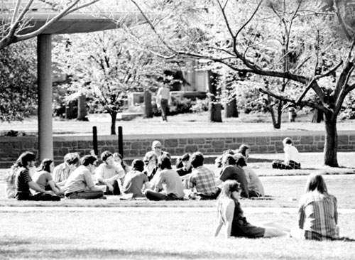 Picture of class meeting outside by the library at Washington University